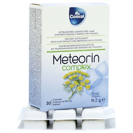 Meteorin (30 capsules) - for the gastrointestinal tract — Vivasan